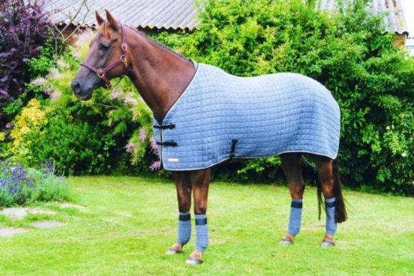Oldencraig Equestrian Centre Dressage Surrey Livery Yard Surrey